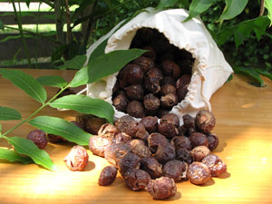 soapnuts natural detergent environment friendly eco